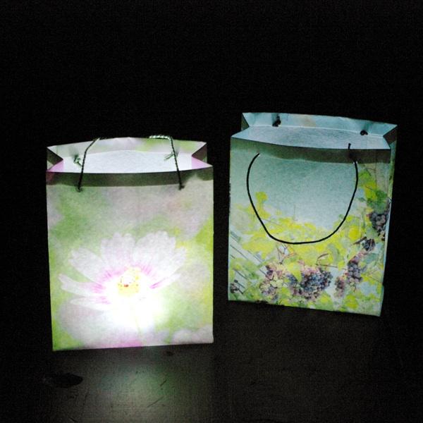 paperbag05